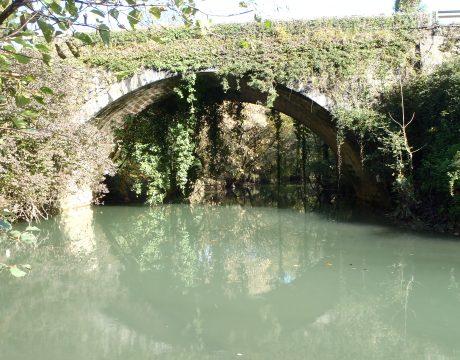 Puentes de Bizkaia, inspección, consultoría y gestión. - 9