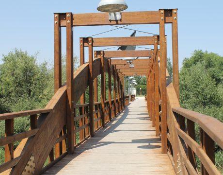 Inspección de puentes, viaductos y pasarelas - 5